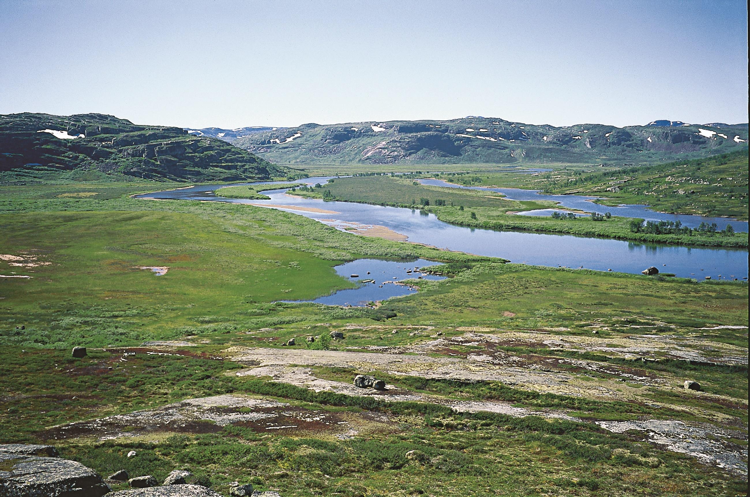 Rjotemyrane mellom Hedlo og Hadlaska