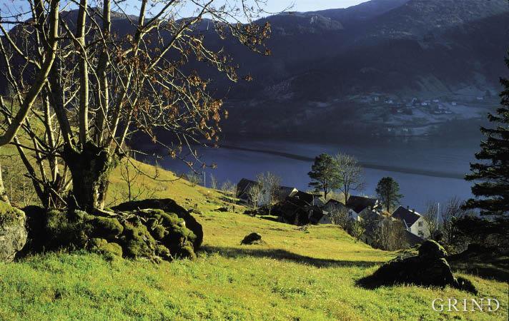 The steep sloping landscape on Håvra