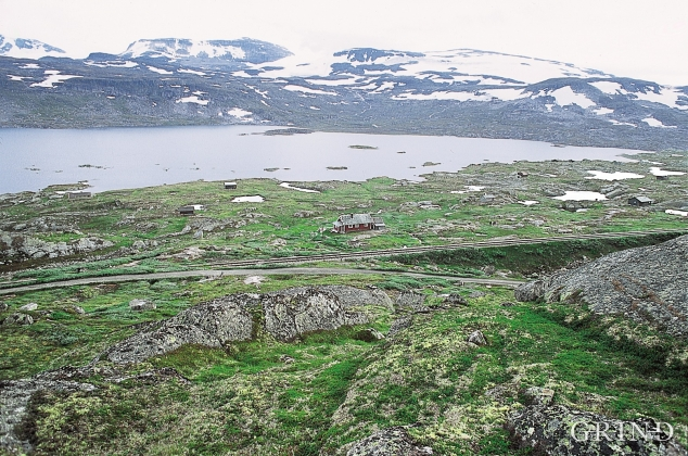 Frå skråninga framfor Nordrenut. Finsevatnet og Hardangerjøkulen i bakgrunnen