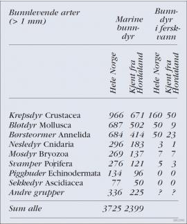 Tabell over bunnlevende arter