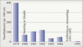 Tarmbakterier i Vangsvatnet fra 1979 til 1993.