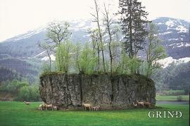 Blokk på elveslette, Lavik i Eksingedalen
