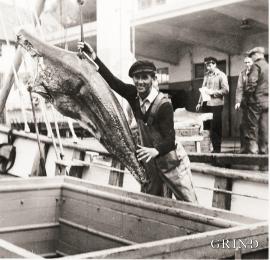 Halvdan Rong om bord i Rongøy, 1954.