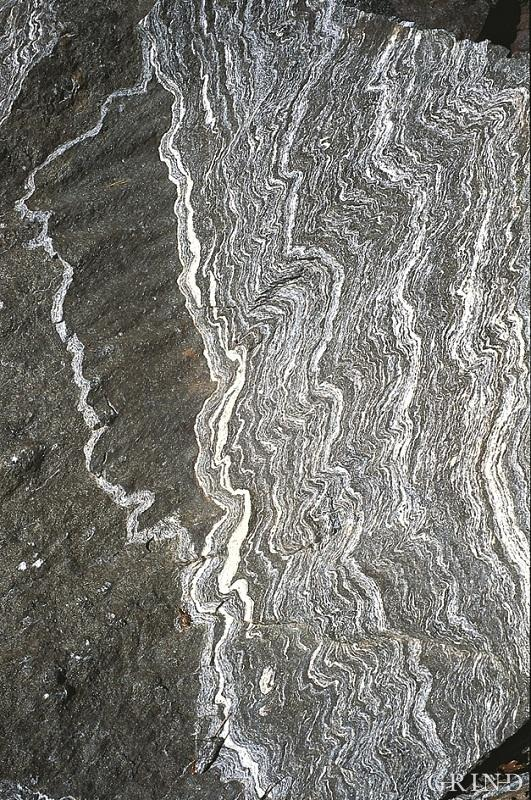 Folded gneiss in a road cutting