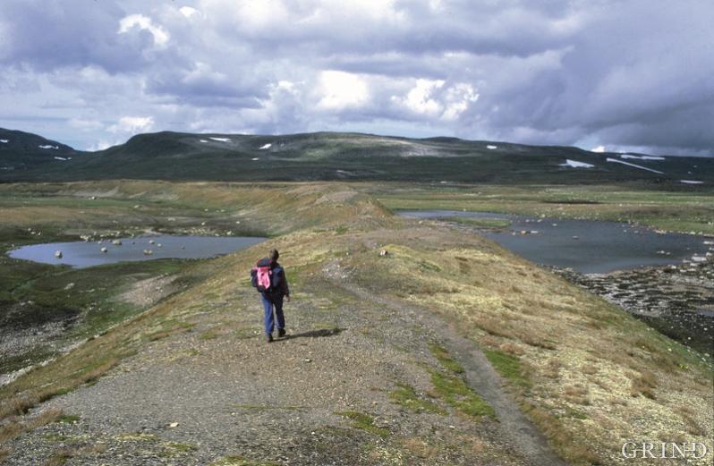 Gravel ridges at Sørfjordsrindane