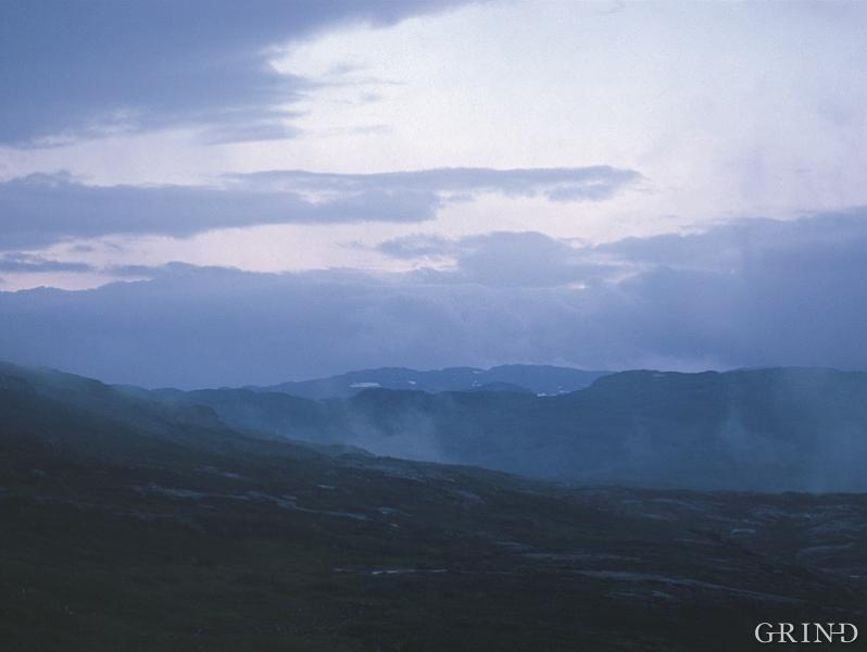 Hardangervidd