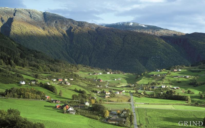 Jordbrukslandskapet i Ulvik