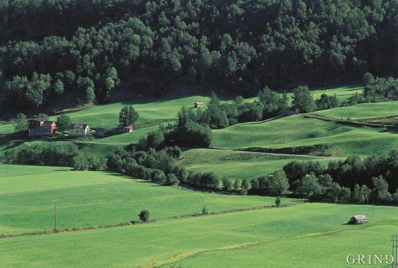 Steinsdalen