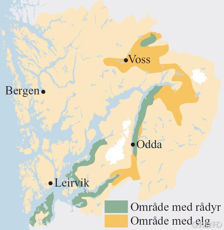 Utbreiinga av rådyr og elg i Hordaland like før siste hundreårsskifte
