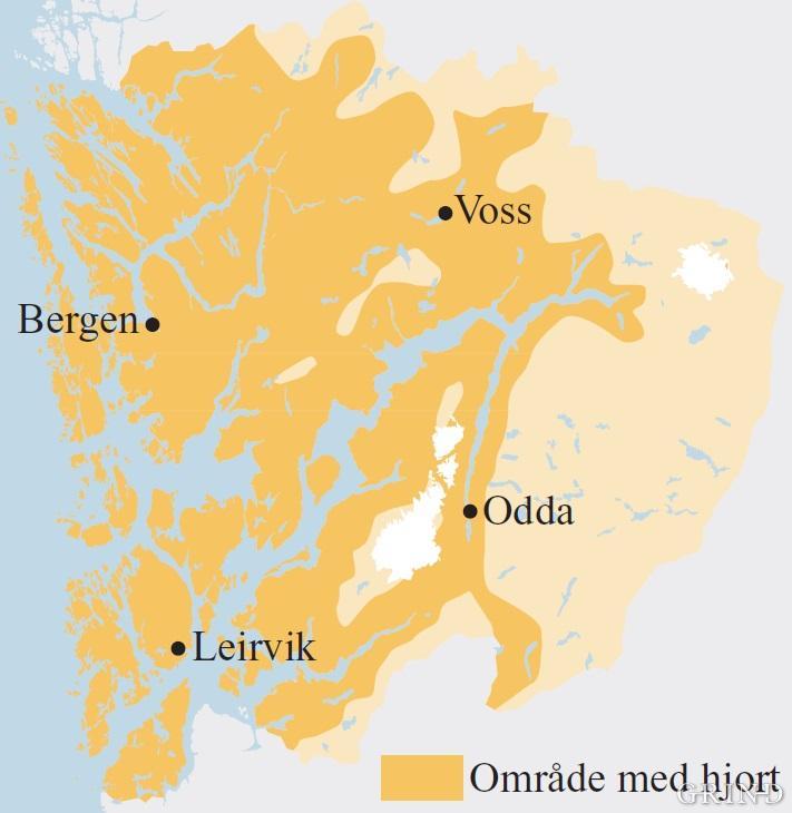 Hjorten finst i alle kommunar i Hordaland, men dei store samanhengande fjellområda i indre strok har ikkje ei fast stamme.