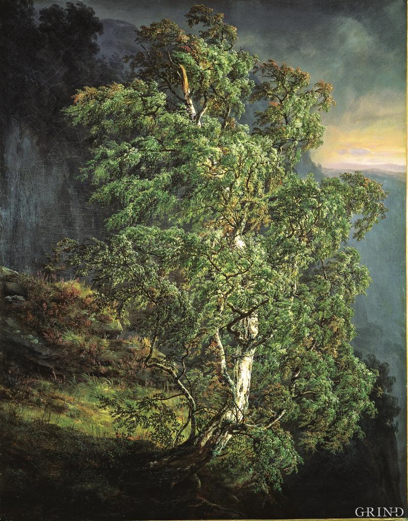 J.C.Dahl: «Bjerk i storm» (1849)