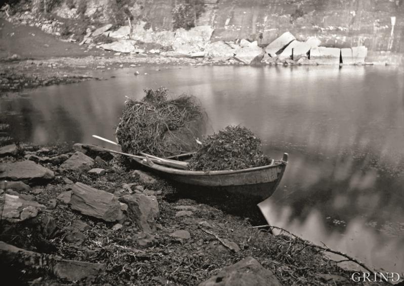 Tysnes 1872