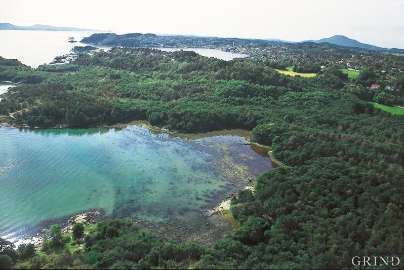 Oversikt over Hystad, Stord, med svartorskogen og stranda