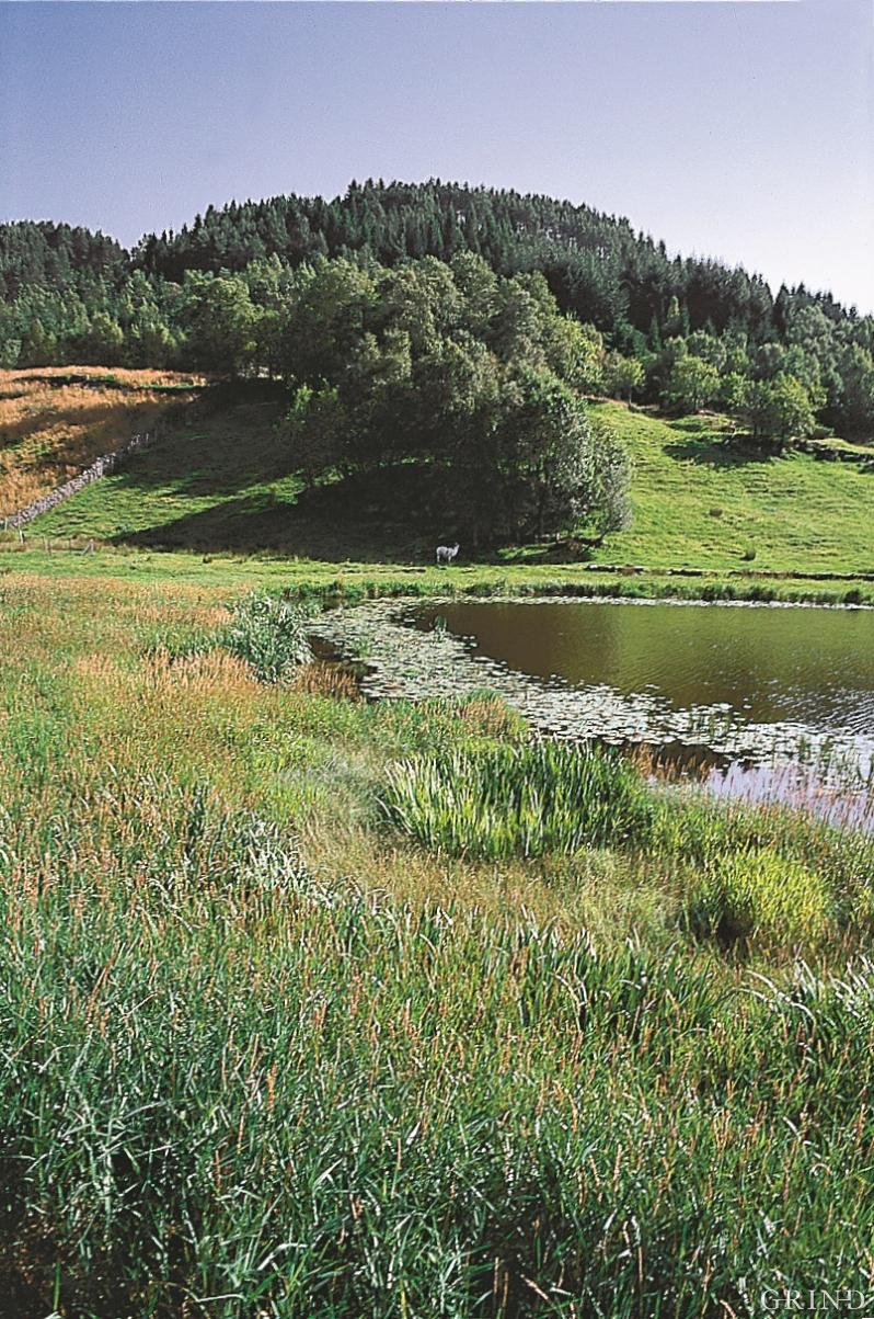 Brakstadvatnet i Meland